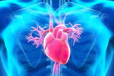 kalp kapağı ameliyatı